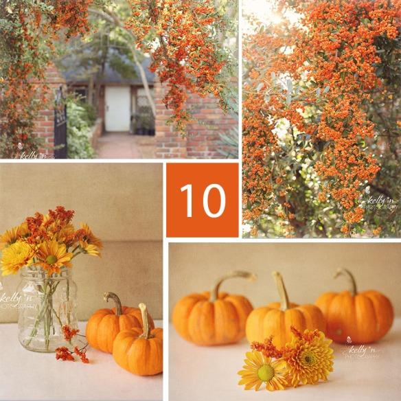 October orange collage