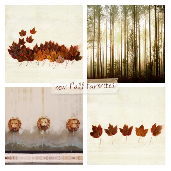new Fall faves