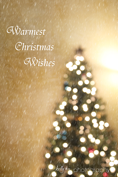 2013 Christmas tree wish web